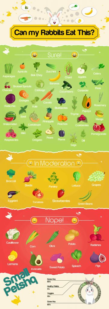 what do rabbits eat infographic