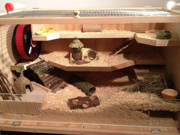 Wooden Hutches for hamsters